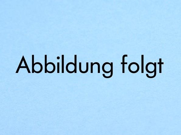 Kugelkettenverbinder -transparent f. 01/03 u.04er Kugelkette/Rollo